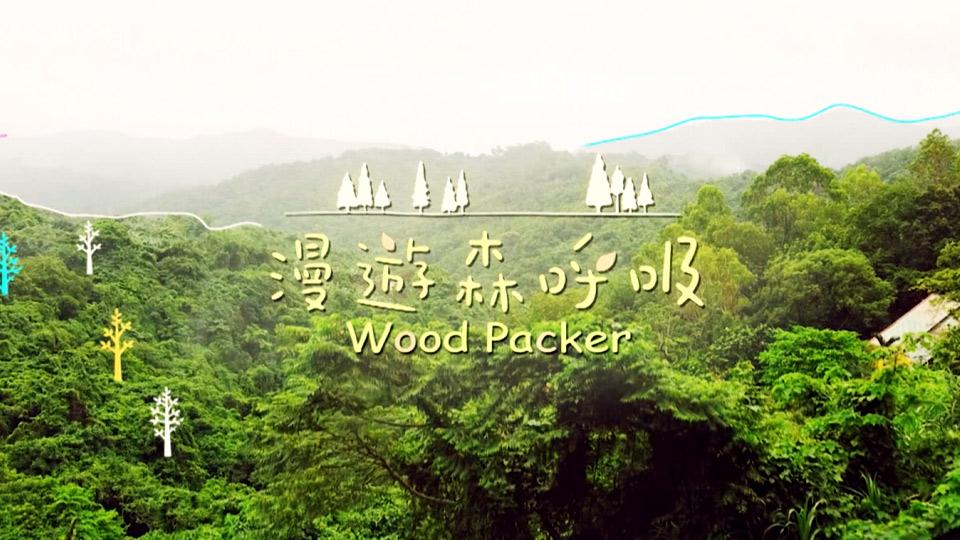 漫遊森呼吸-Wood Packer
